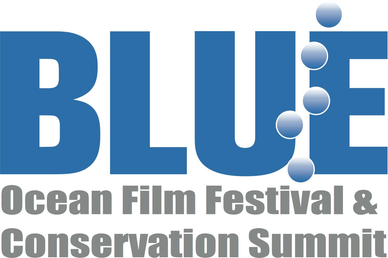 2014 BLUE Logo Summit vector.jpg