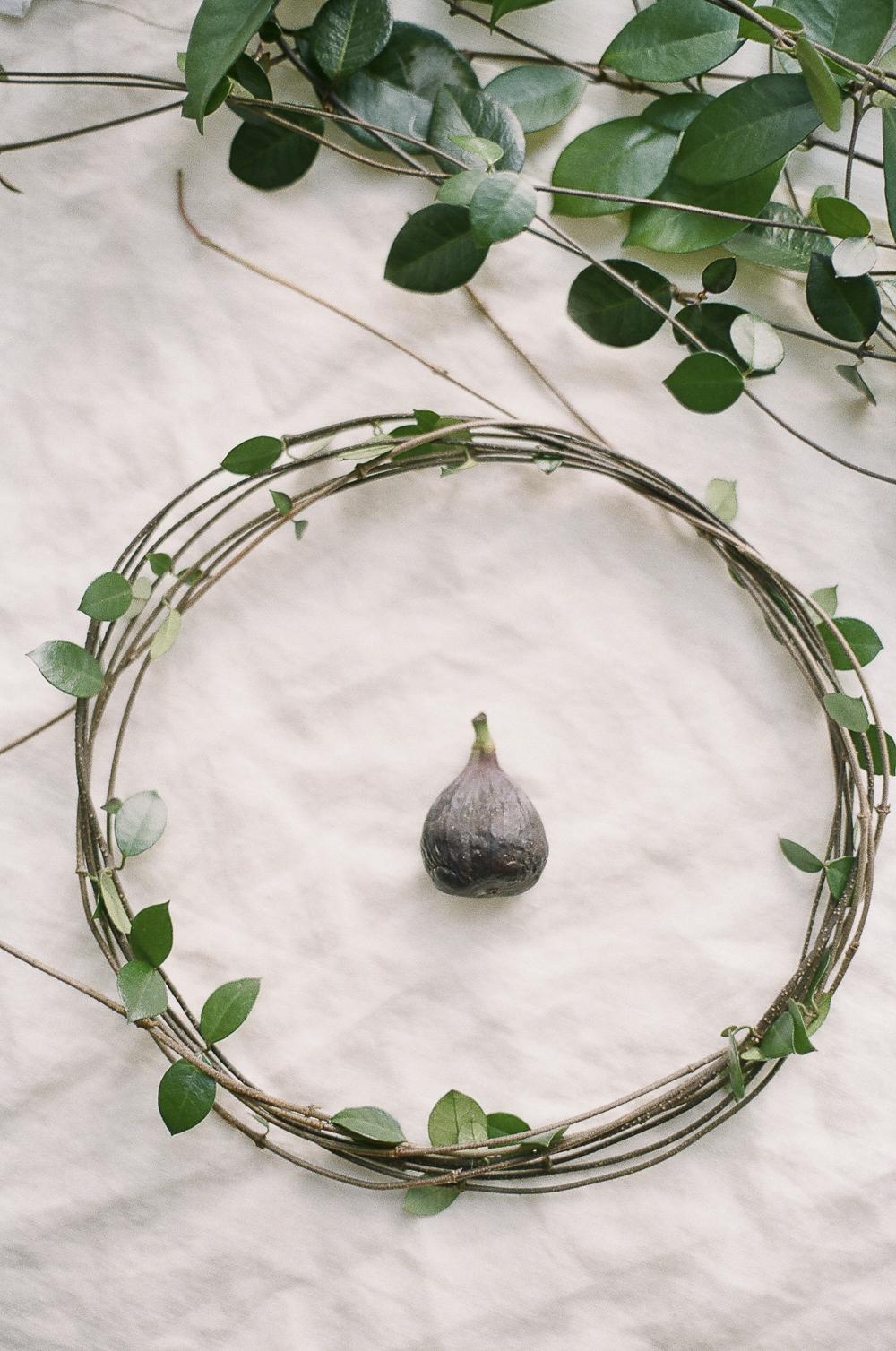 figs-01.jpg