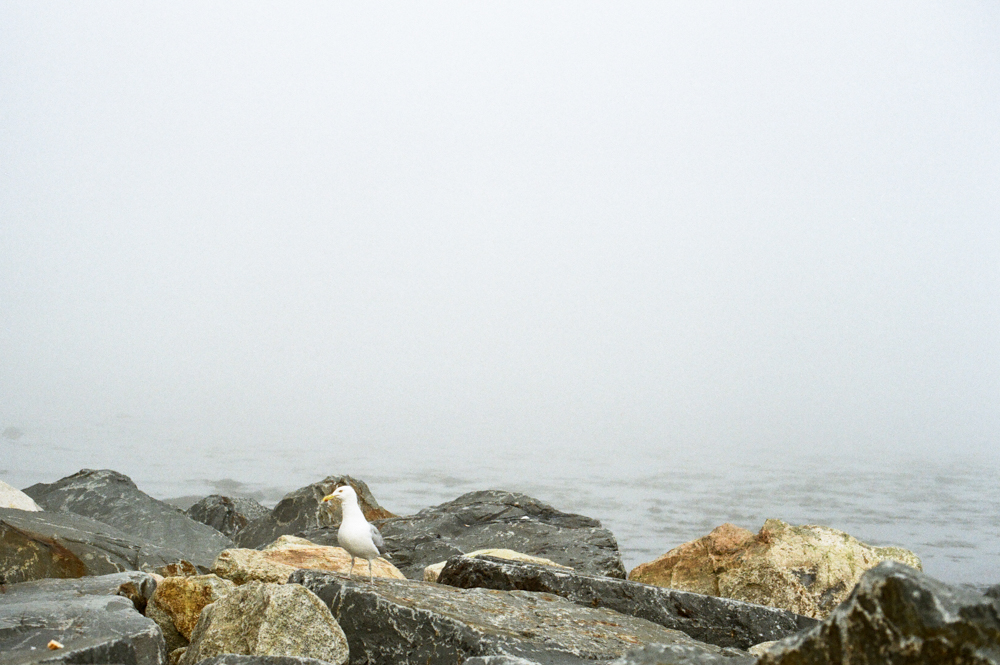 boston-massachusetts-fil-photographer-scituate-lighthouse-travel-photographer-christine-gosch-destination-photographer-9.jpg