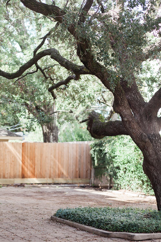 Houston wedding venues - the creative chateau - houston film photographer - french wedding venue - intimate wedding venue - christine gosch-2.jpg