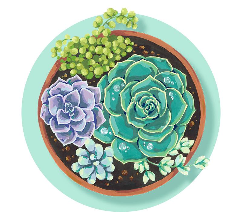 Home & Garden -