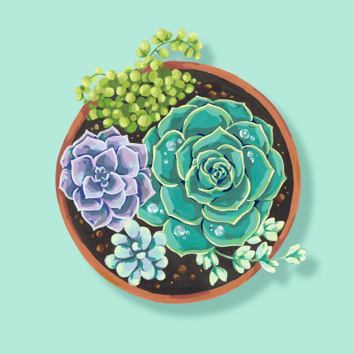 AndreaGonzalez_Themes_Home&Garden_Web.jpg