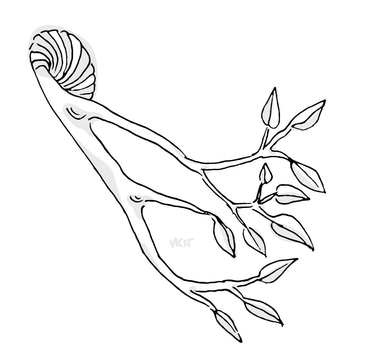 6.17.15_snailtree.png