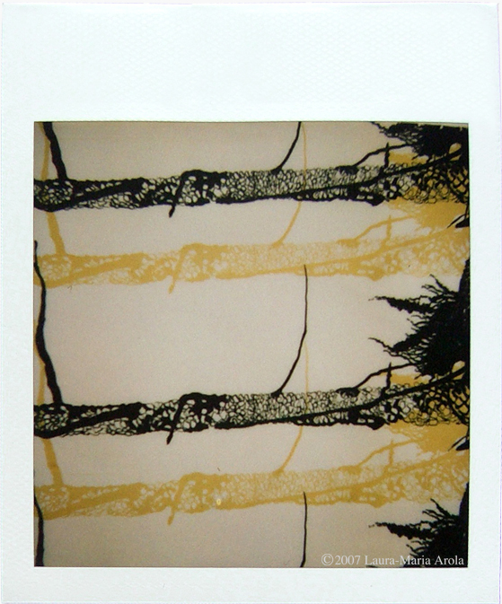 Tall Tree   II   Polaroid of screen print