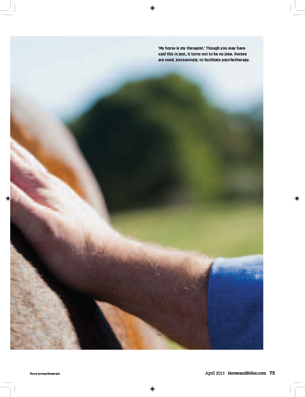 Outside-of-the-Horse-2.jpg