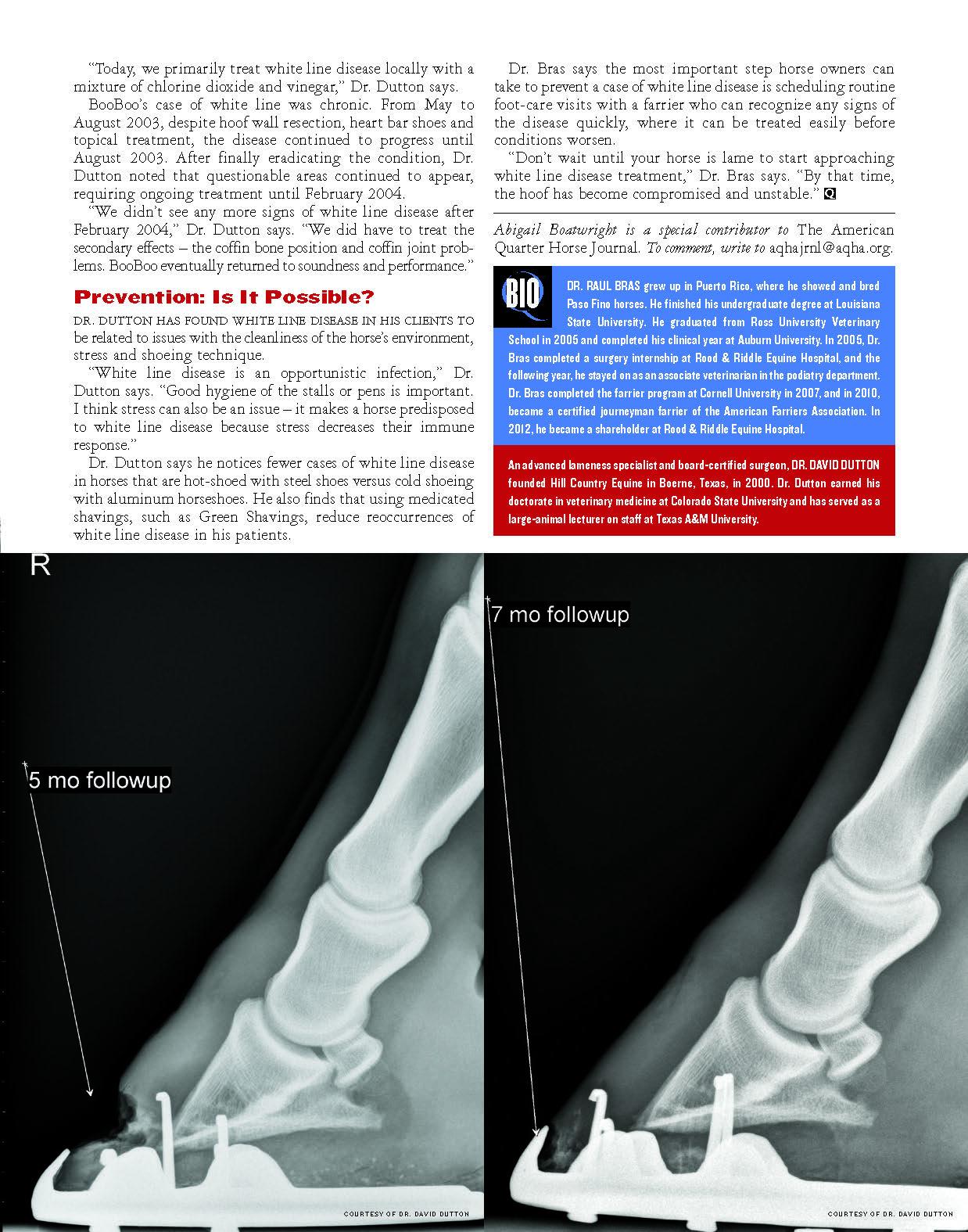 White Line Disease_Page_4.jpg