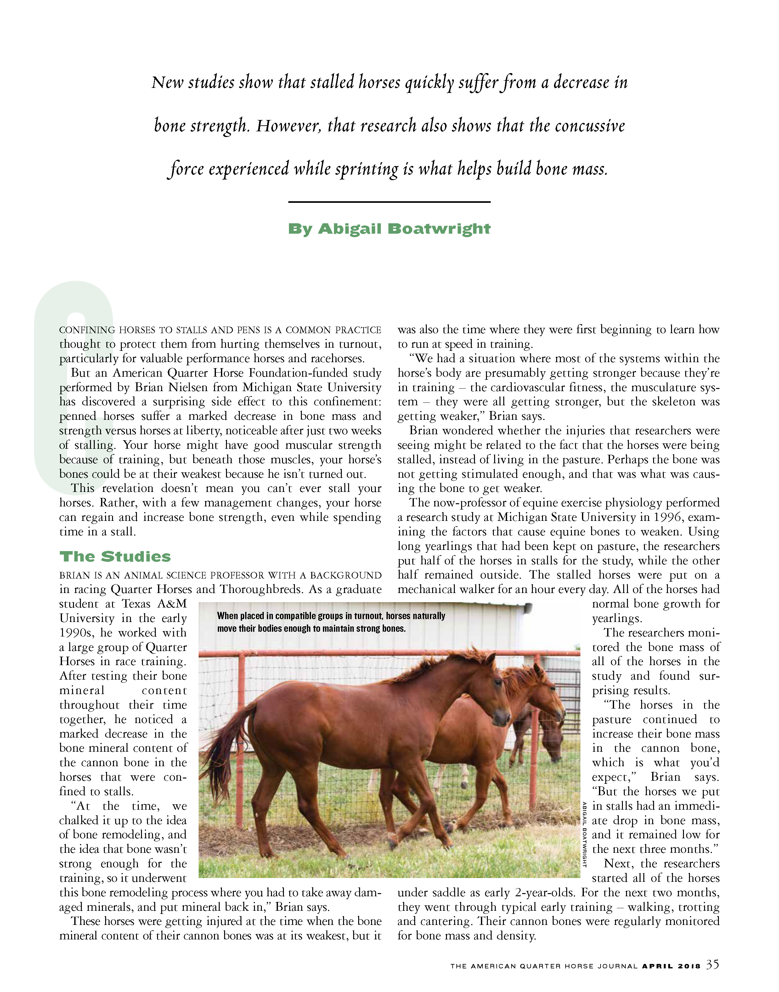 G13 AQHA Research - bone loss_Page_2.jpg