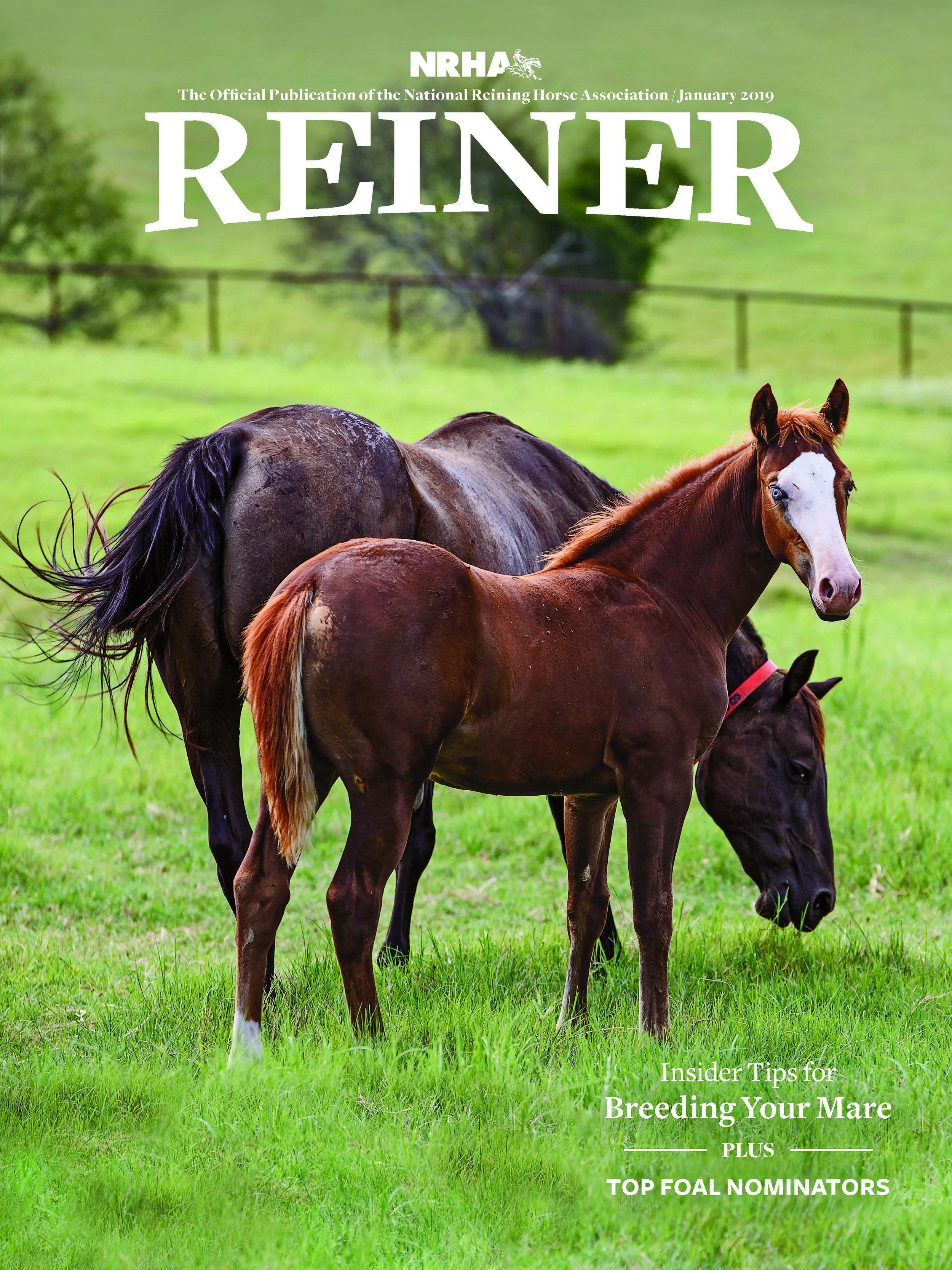 REINER-1901-COVER.jpg