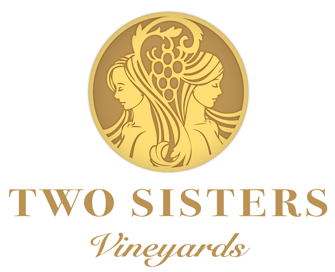 Two Sisters TSV_MASTER PRINT LOGO WORDS 2.png