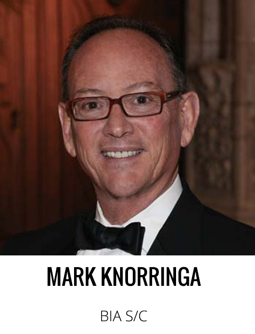 past-mark-knorringa.jpg