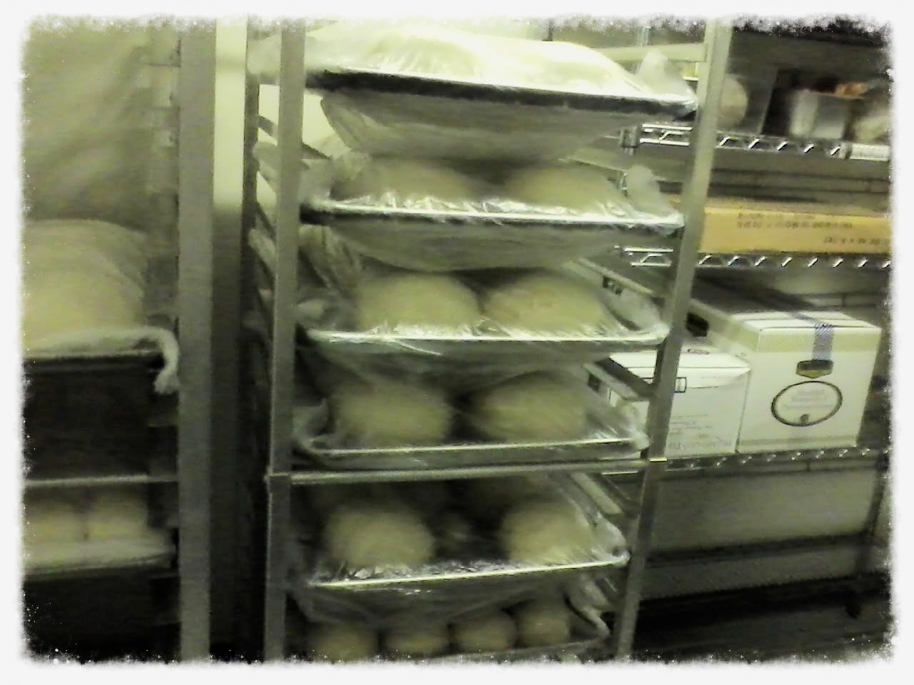 Dough Made Fresh Daily
