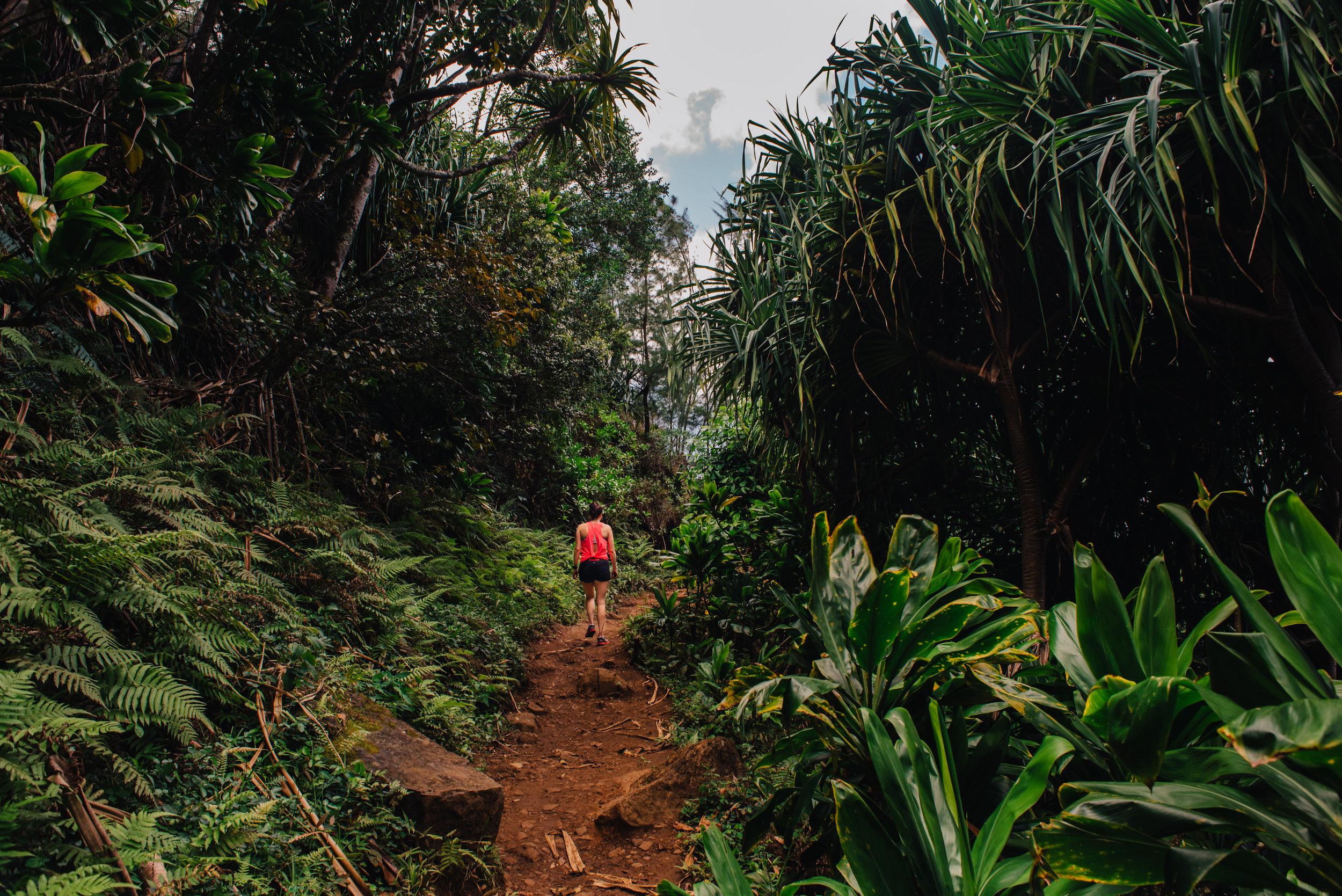 kauai2016-50-2.jpg
