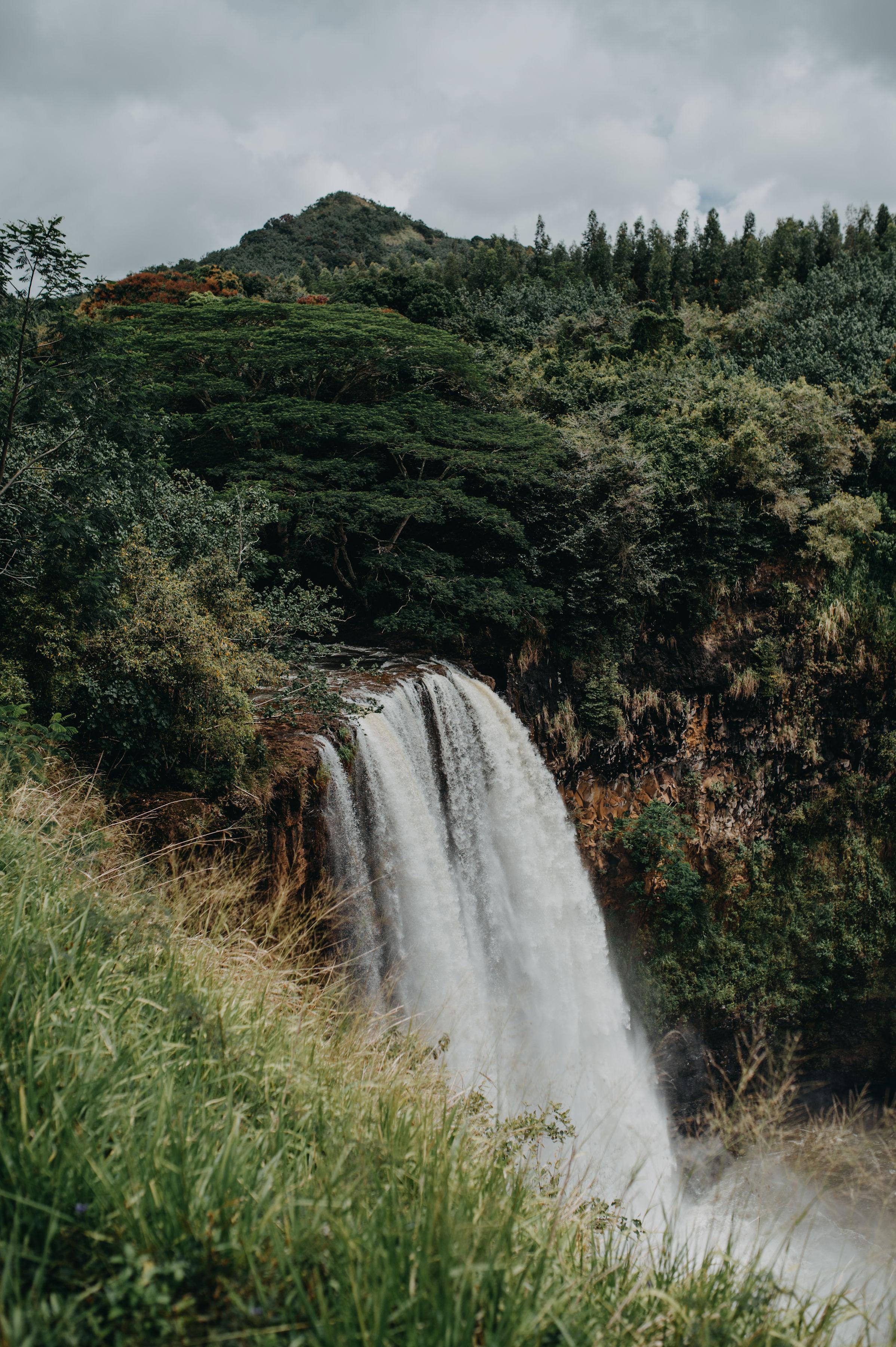 kauai19-132.jpg