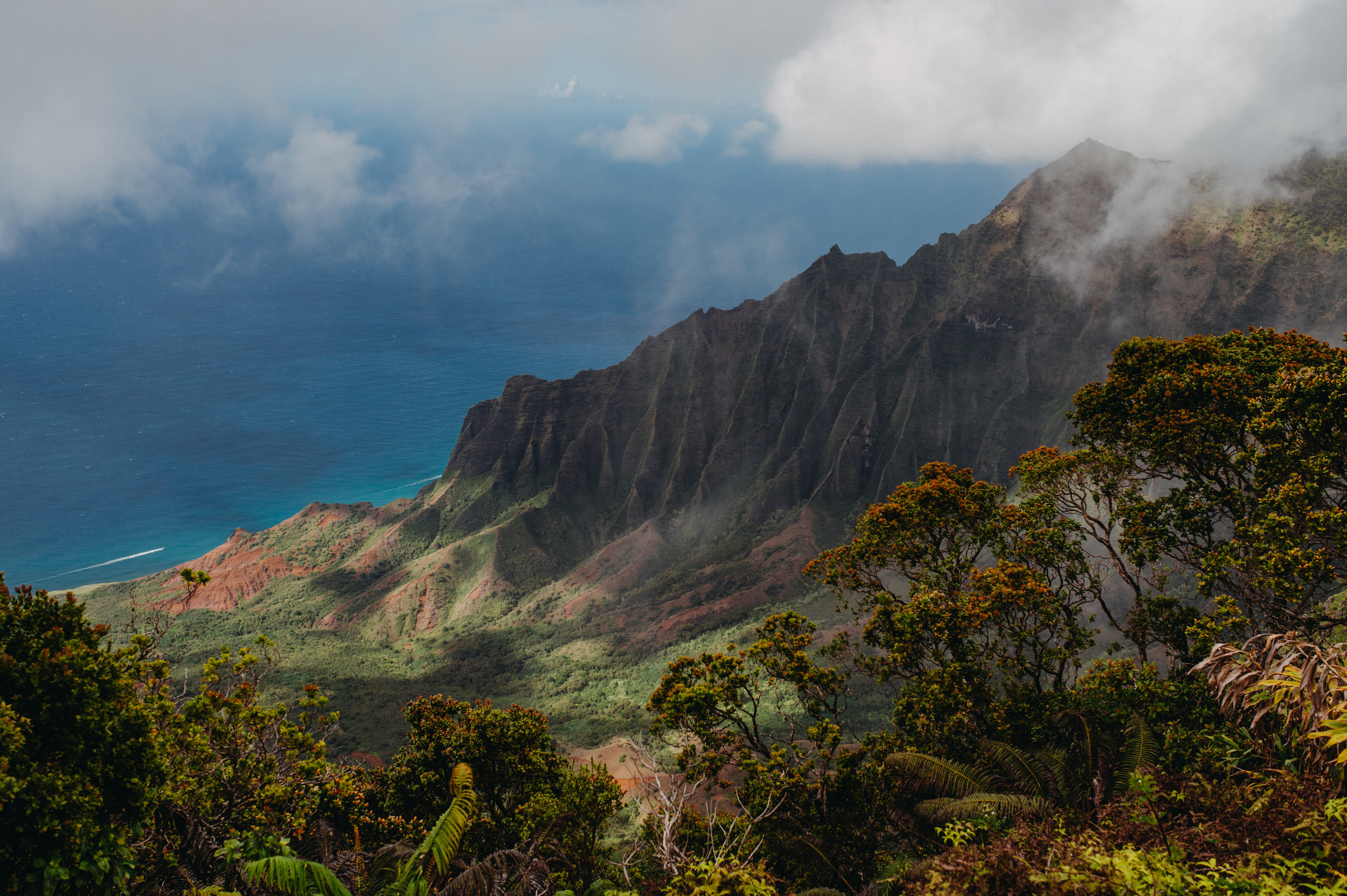kauai19other-2.jpg