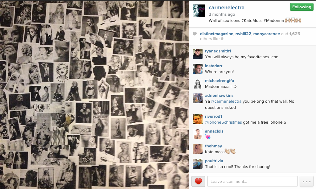 "Carmen Electra: ""Wall of Sex Icons"""