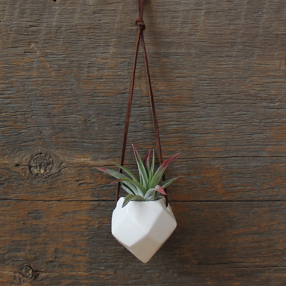Janelle Gramling - Midwestival Gift Guide 2014