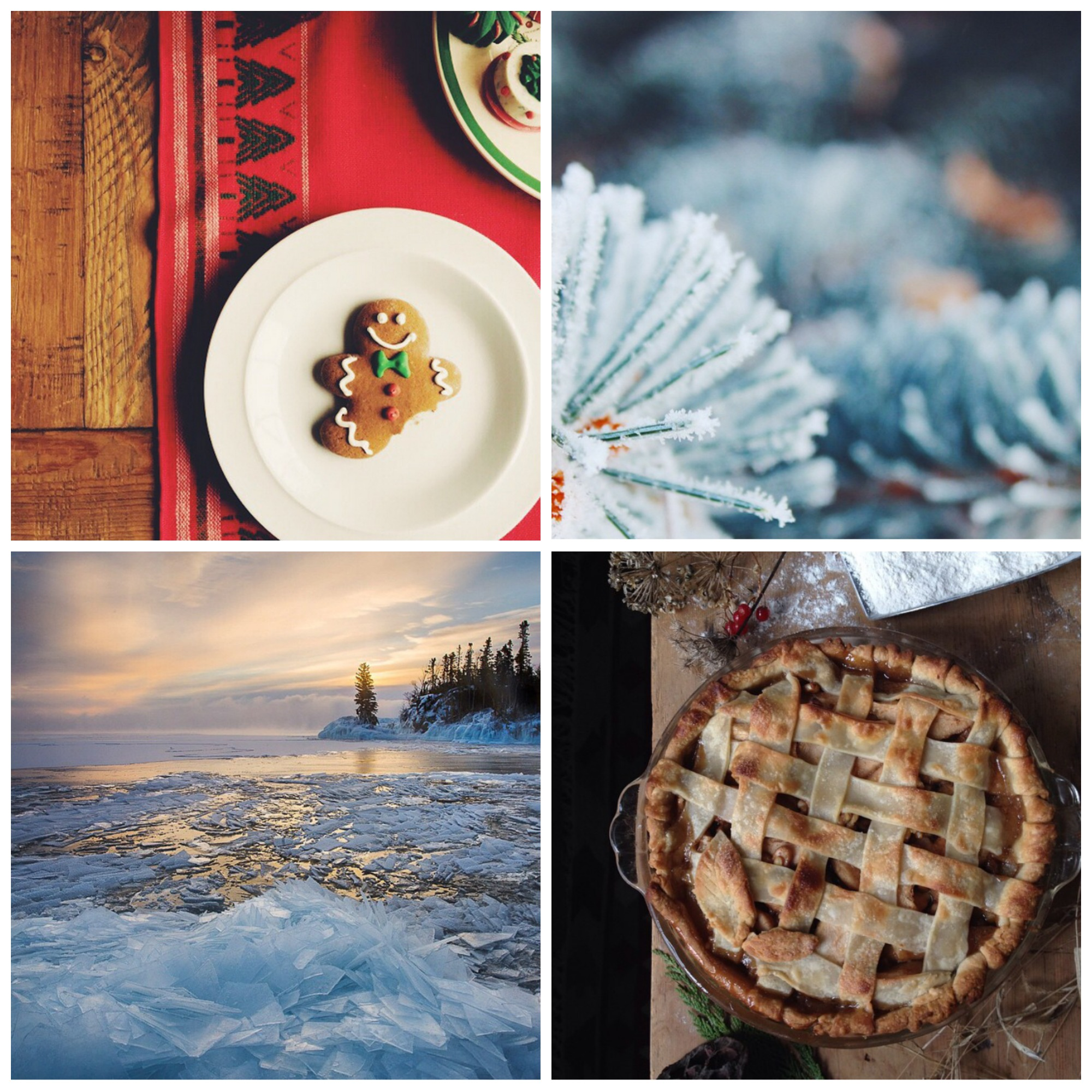 This week's Instacrushes! Clockwise from the top left:@ hmnphotographer , @ annie.persson , @ bonneyboys ,@ olsonimagery