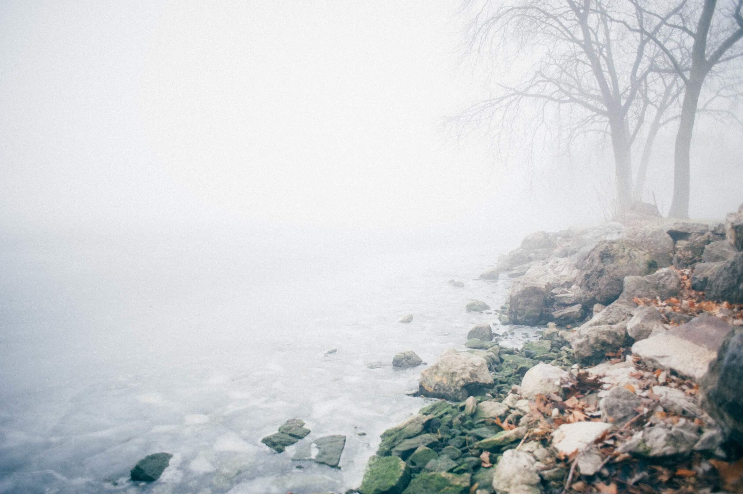 Madison Fog via The Midwestival