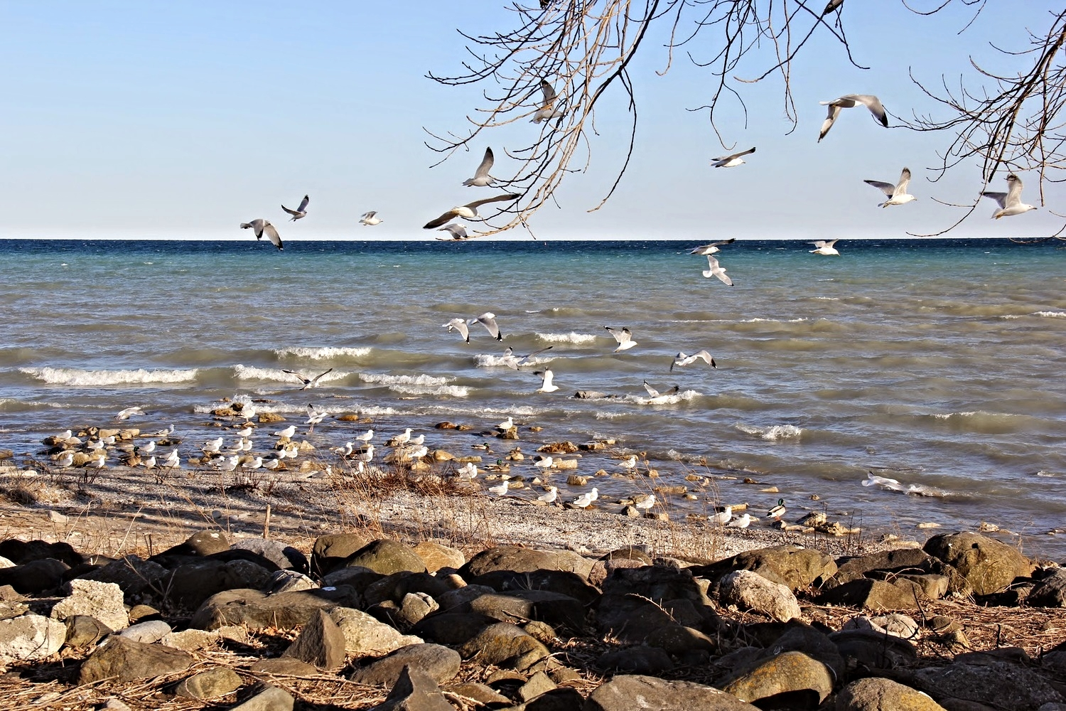 Spirit on the Lake: Guide to Sheboygan — The Midwestival