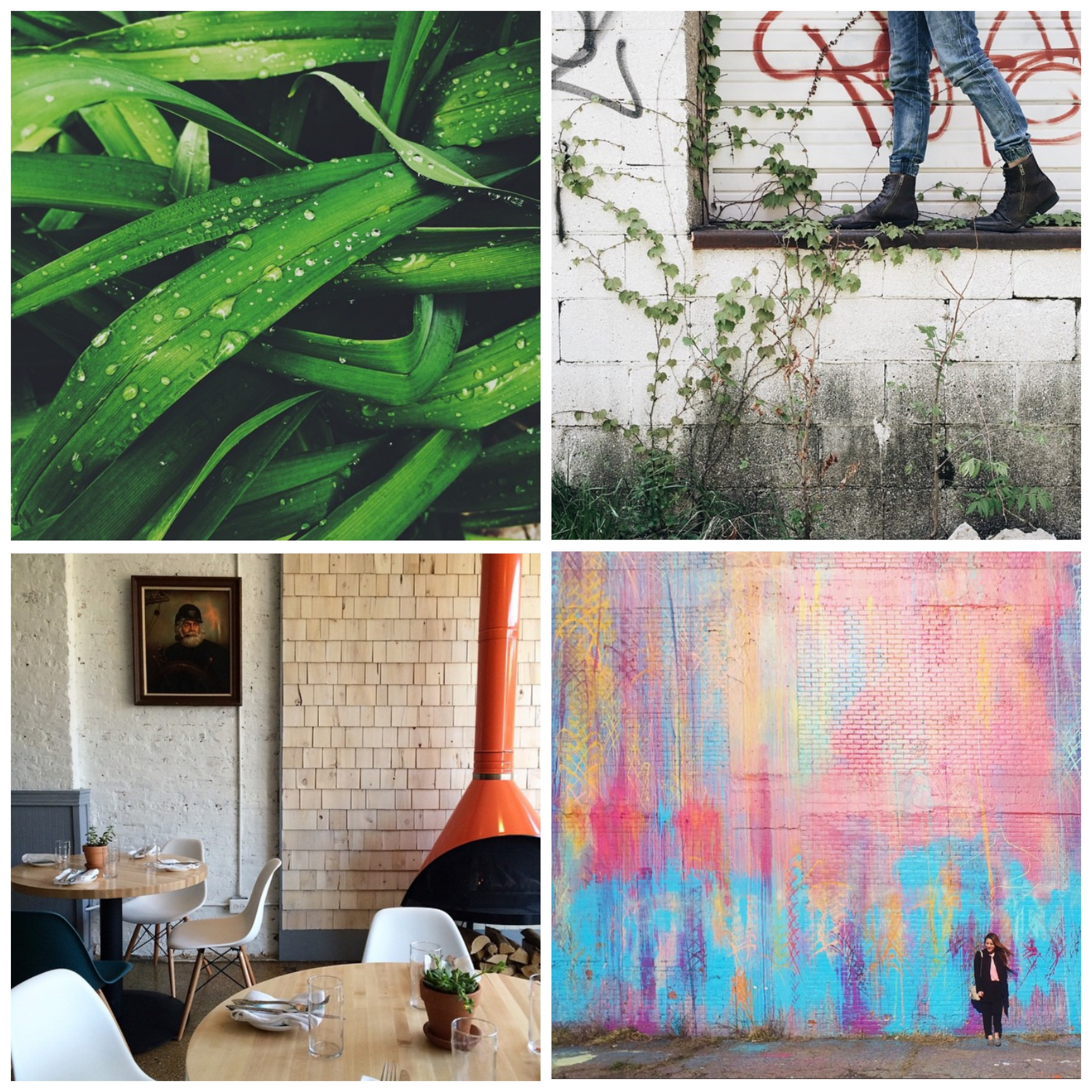 This week's Instacrushes! Clockwise from top left: @ ohemmadeer , @ anarbatskiy , @ seoung , @ thehauteboheme