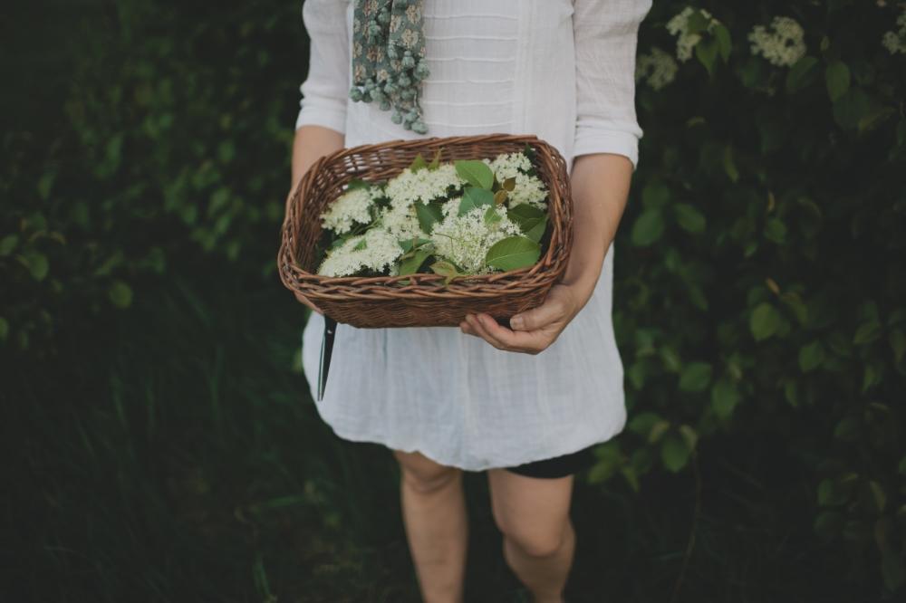 Elderflower Cordial via The Midwestival