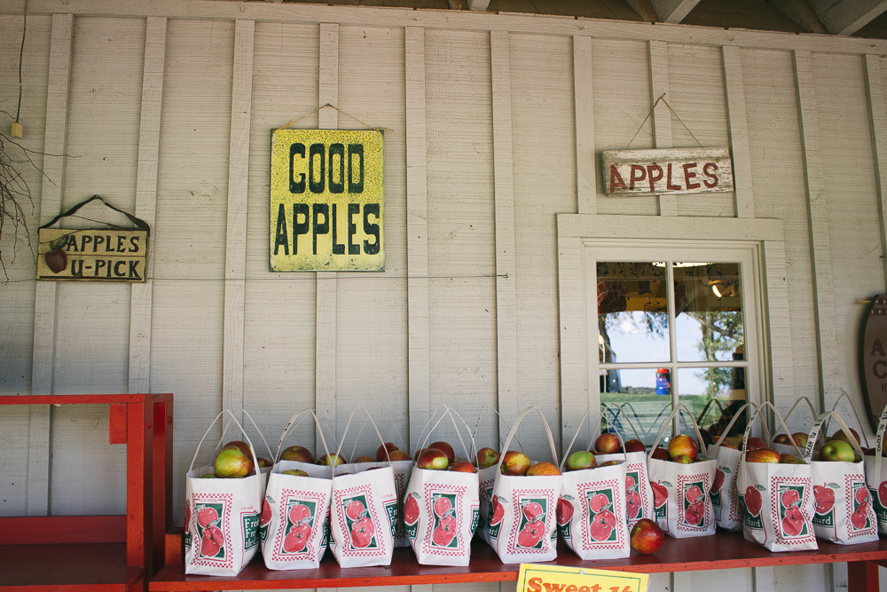 Apple Picking at Minnetonka Orchards via The Midwestival