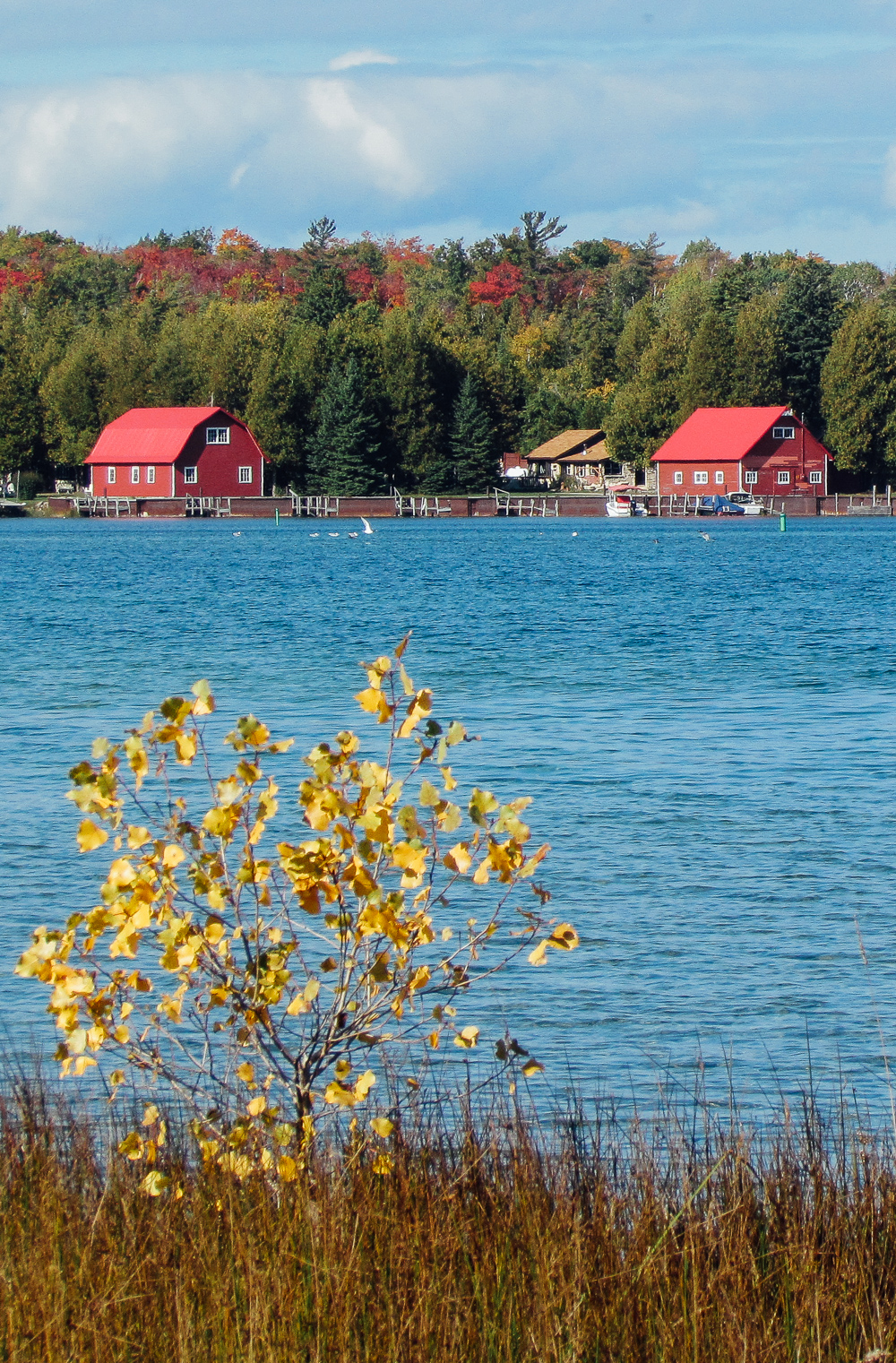 North of the Tension Line: Washington Island via The Midwestival