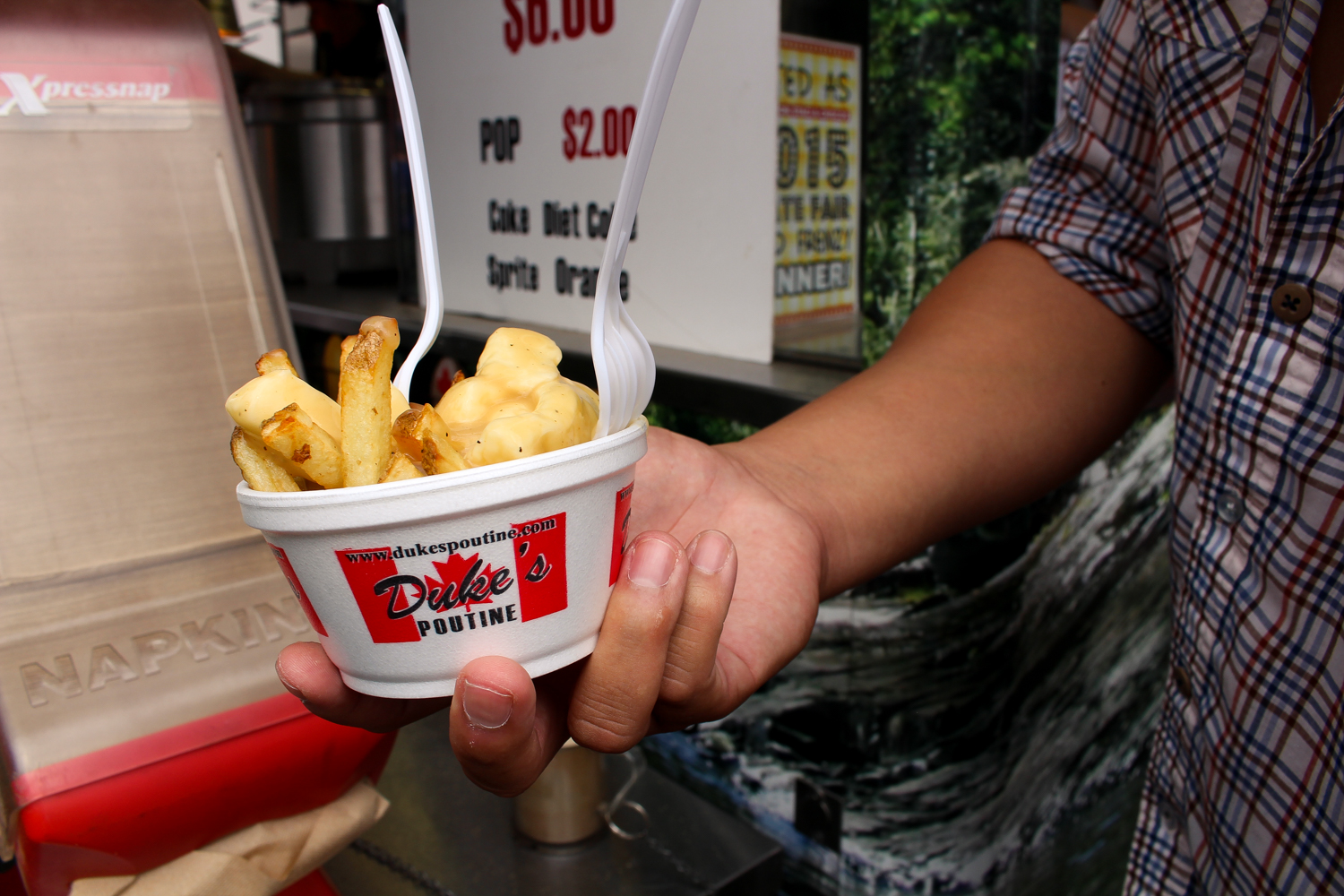 Poutine at the Minnesota State Fair 2016 via The Midwestival