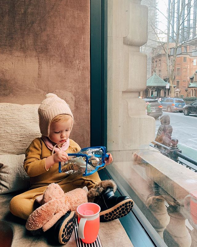 NYC window seat with sharks and bunny.