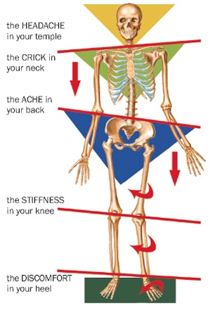 Myofascial Stretches will help correct soft tissue Imbalances throughout your body to alleviate joint pain.