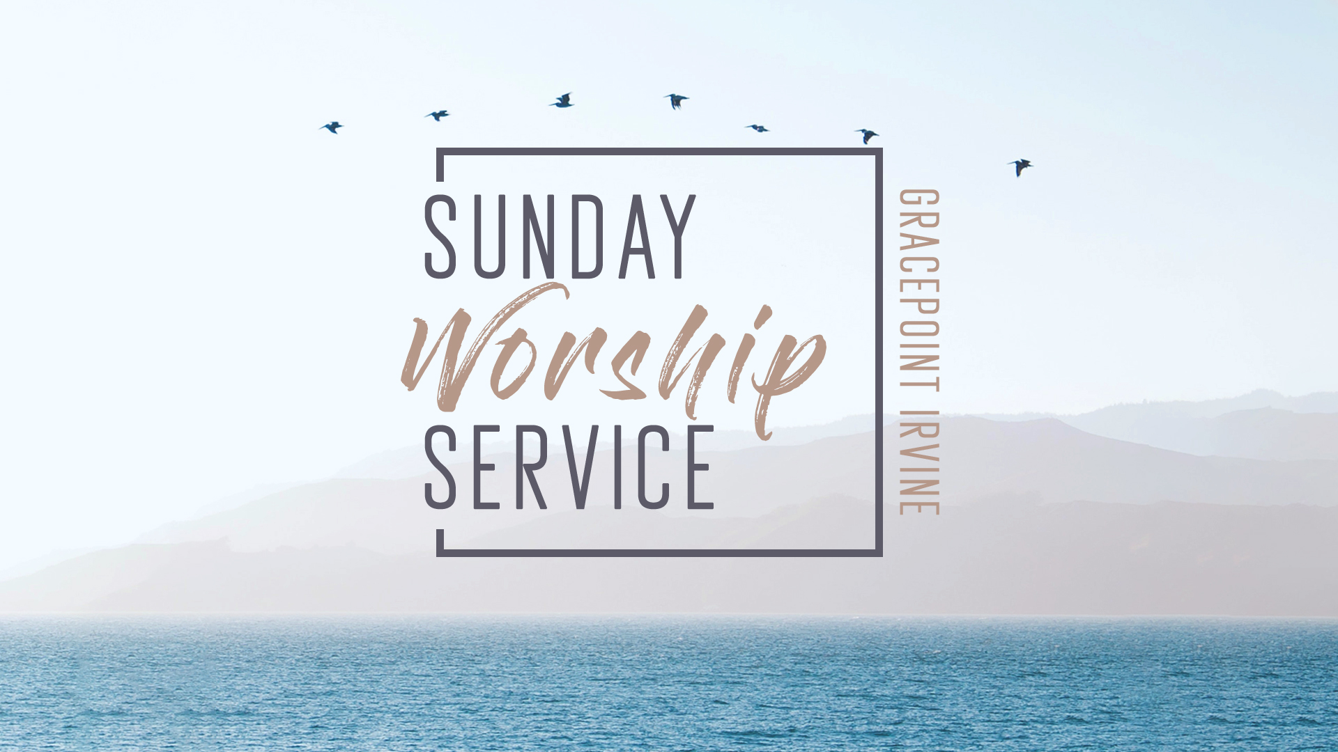 Looking for a church?  Gracepoint  will be having Sunday service on campus at Newkirk Alumni Center B at  1:30pm .  Rides will be from AV and Pippin Lot at 1pm.