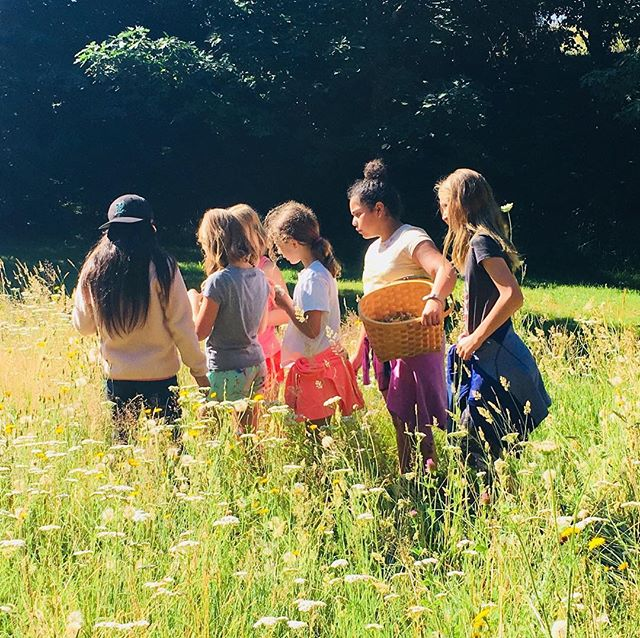 In our most recent blog post, we talk about our new summer camp offering for kids: Garden-to-Table Cooking Camp! The aim of this camp is to empower kids to transform fresh produce into healthy meals and snacks. We expand on the rationale behind this camp, and more, in this blog post - check it out! • Link in bio, or visit www.eclecticherb.com/blog
