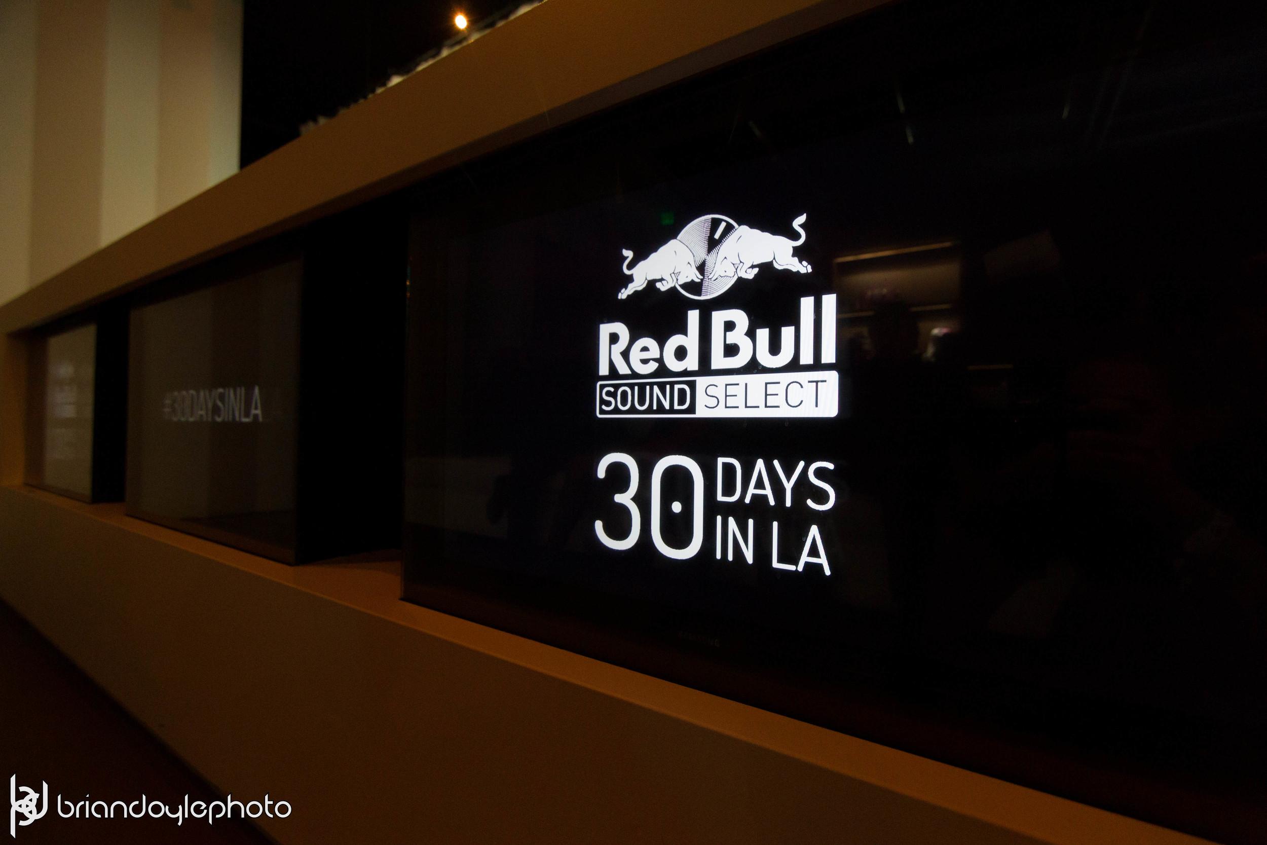 Red Bull - Dum Dum Girls, Tropicana and the Flea, Lowell @ The Well 2014.11.16-36.jpg