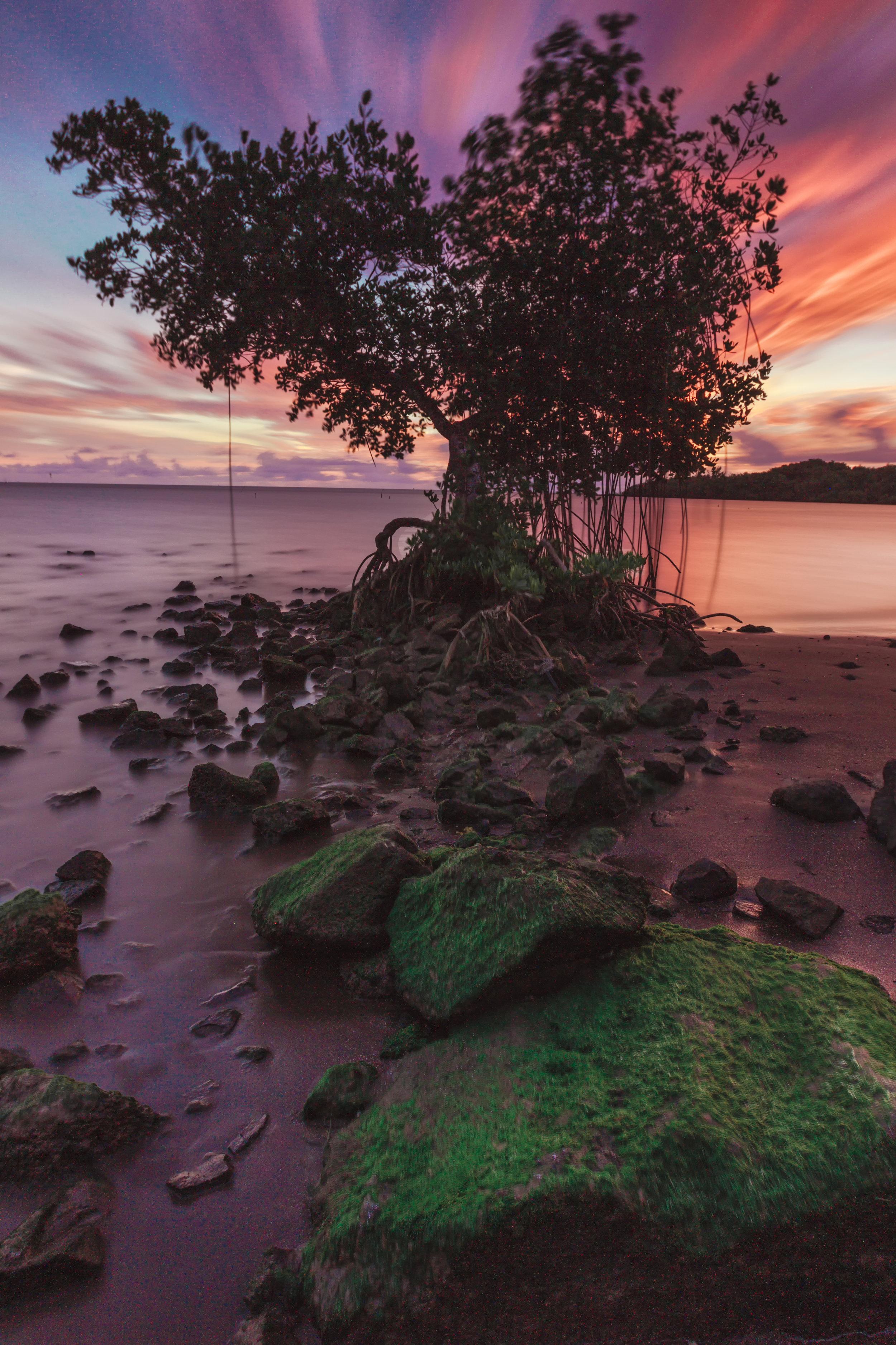 Banyon-Sunrise.jpg