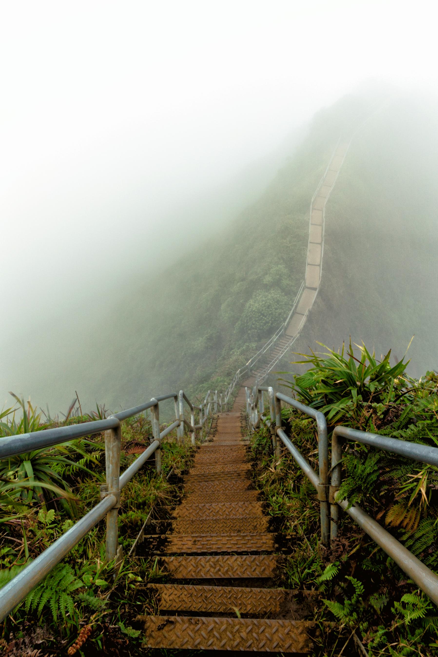 Foggy-Stairs-Vert-2.jpg