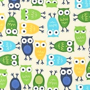 Owls in Boy