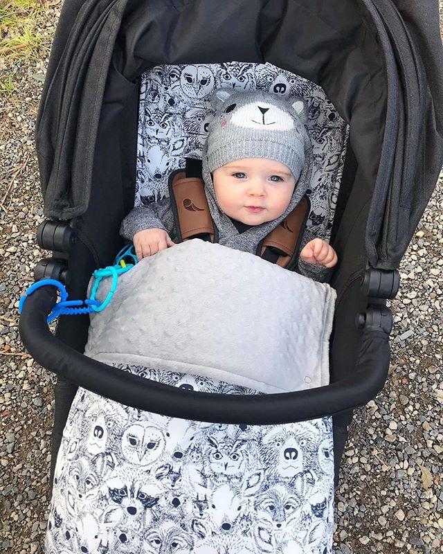 ❄️☃️ Still staying warm & comfy in this cold weather! How adorable is this little man & his little friends!! ☃️❄️ Thank you for the adorable 📸 @barbora_yoga 💕 . . . . . #footmuff #pramfootmuffs #pramliner #pramliners #custompramliner #babystuff #winterbaby #pram #stroller #babyjogger #harmonyj #pimpmypram #comfybaby #babyaccessories #babystyle