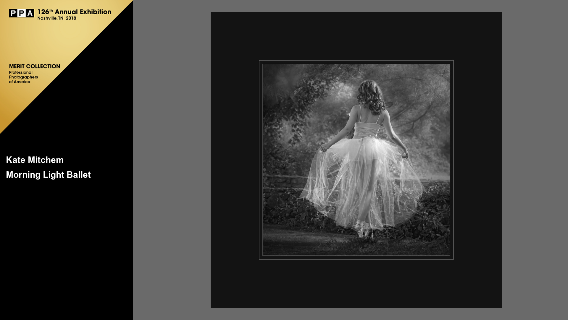 2017 Professional Photographer's Association Judging received Merit Award!