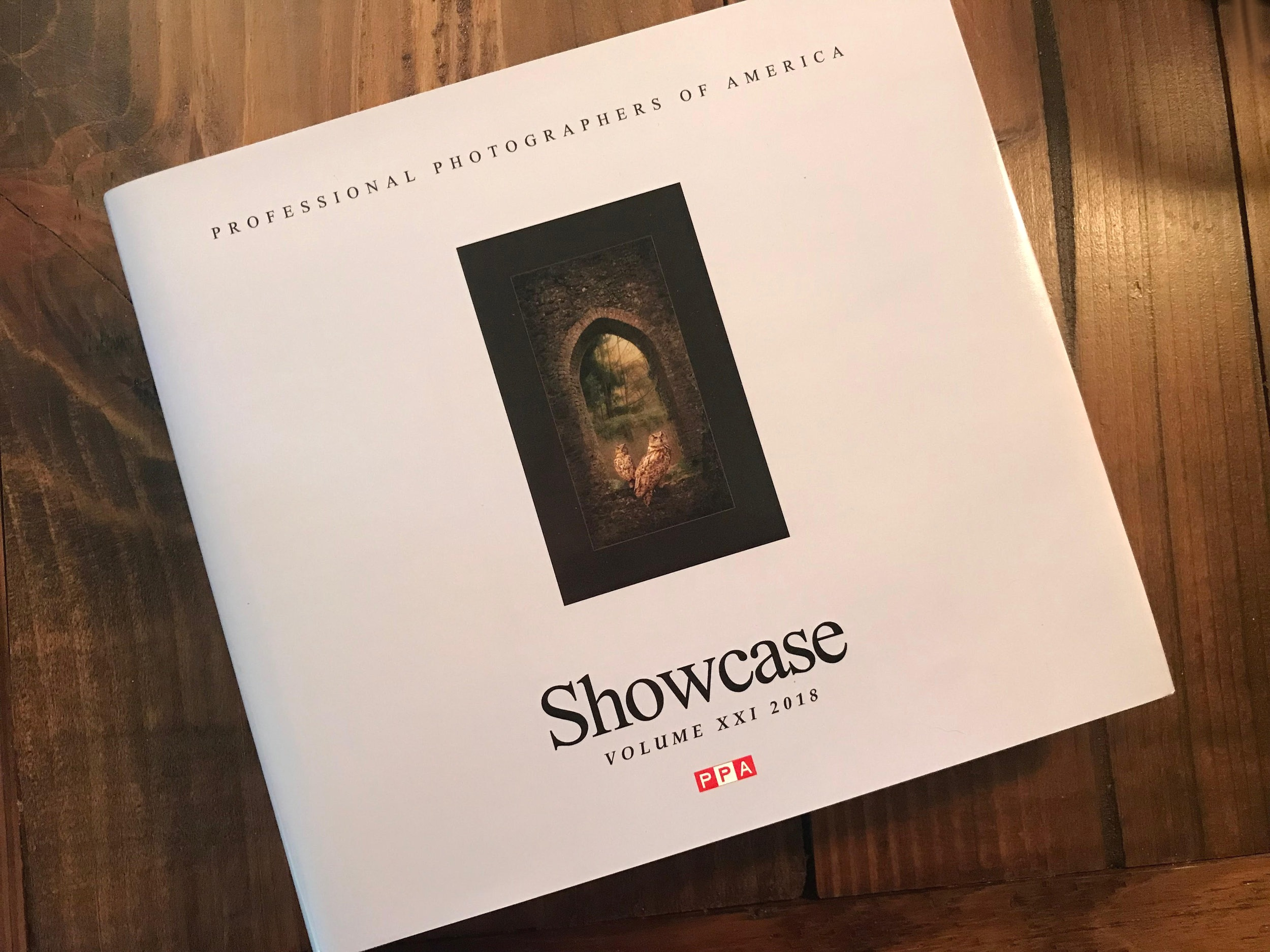 Showcase Annual Collection for Professional Photographer's Association!