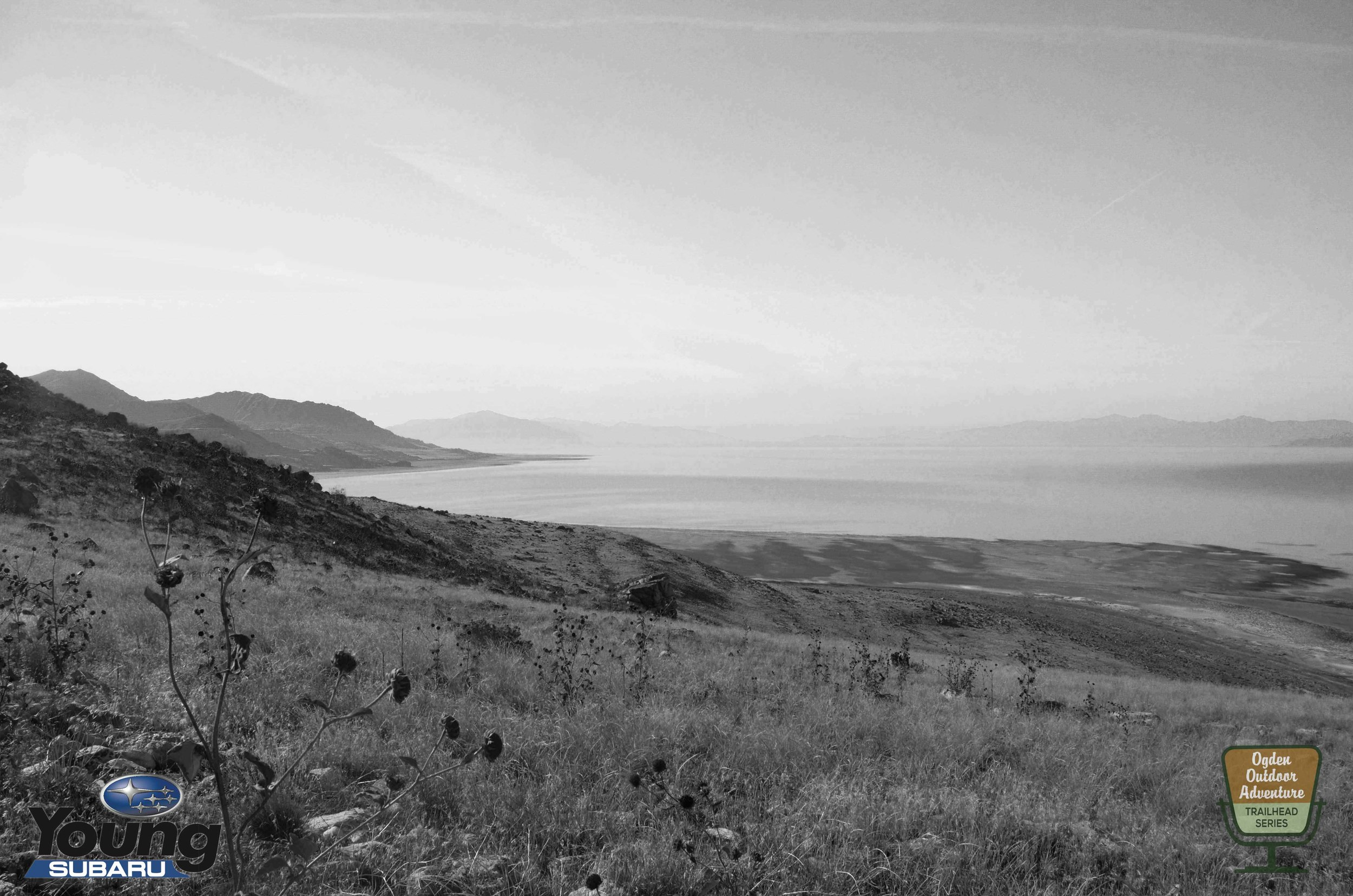 The Great Salt Lake as seen from Antelope Island State Park