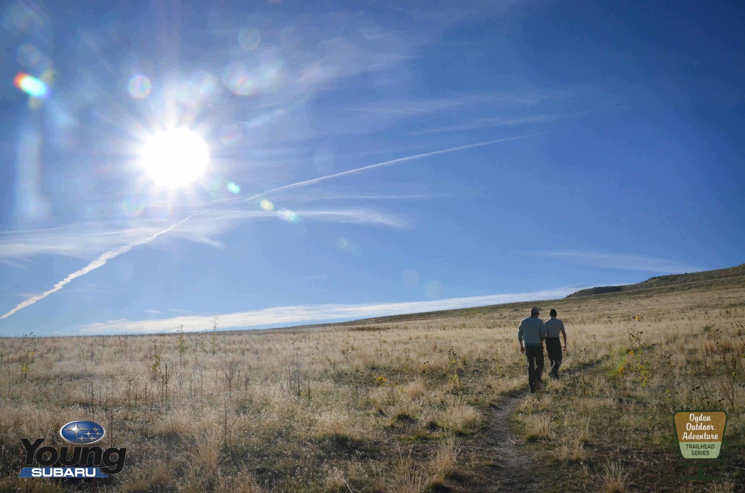 Hiking an unmarked Buffalo trail on Antelope Island