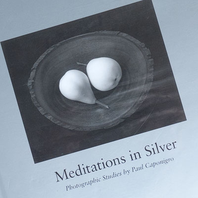 Meditations in Silver by Paul Caponigro