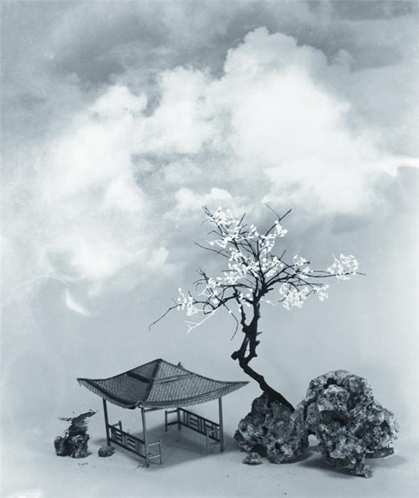 Photograph  by Lang Jingshan