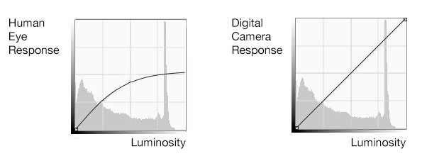 The human eye compresses luminosity. In other words, we are unable to see true dynamic range. It is a physical impossibility. Digital cameras can however see the true dynamic range. Even so, just because they can, does not mean they render images the way we see them. We need to use grads to do that.