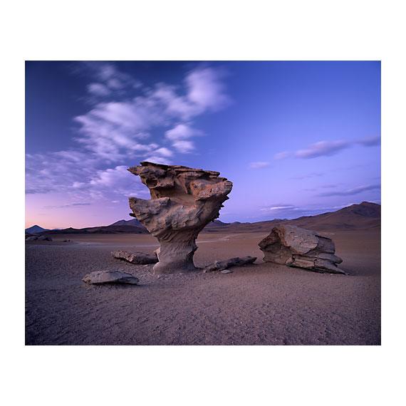 El-Arbol-de-Piedra.jpg