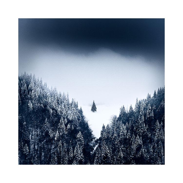 Transylvania-2018-(6).jpg