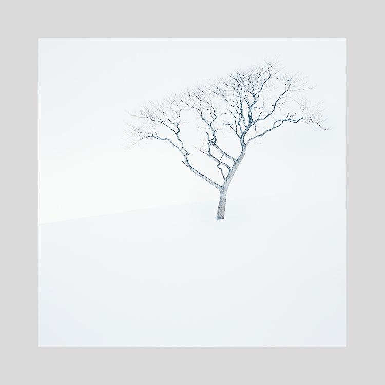 Hokkaido-2019 (2).jpg