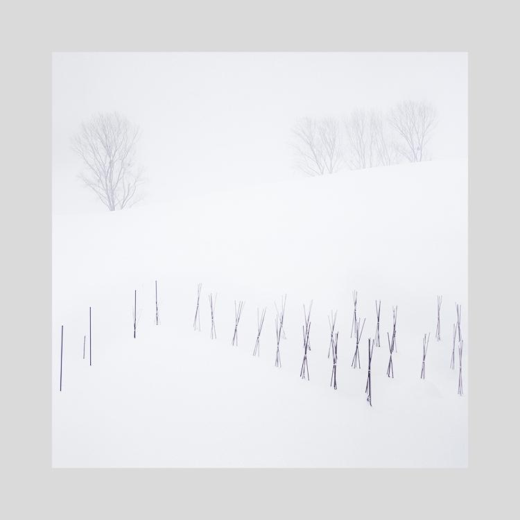 Hokkaido-2019 (7).jpg