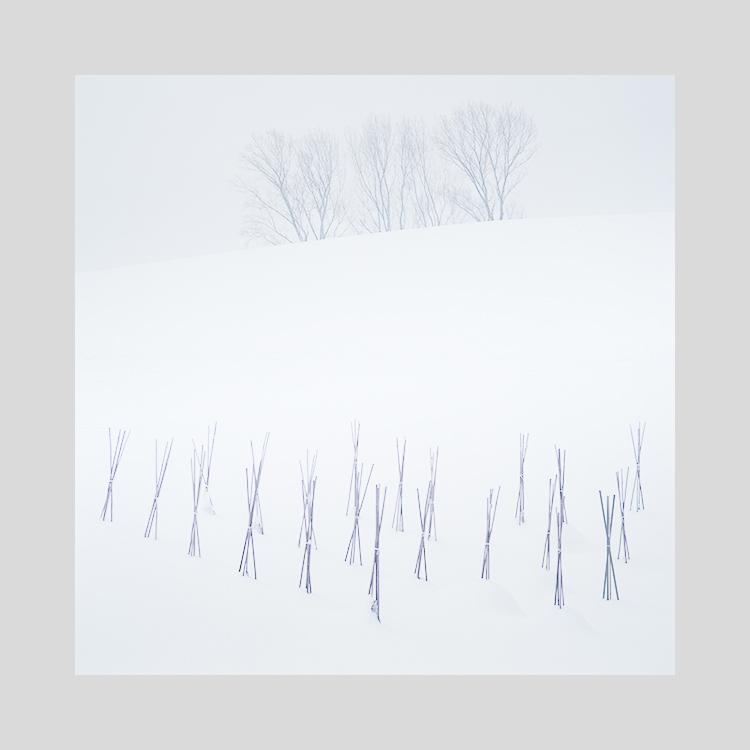 Hokkaido-2019 (8).jpg