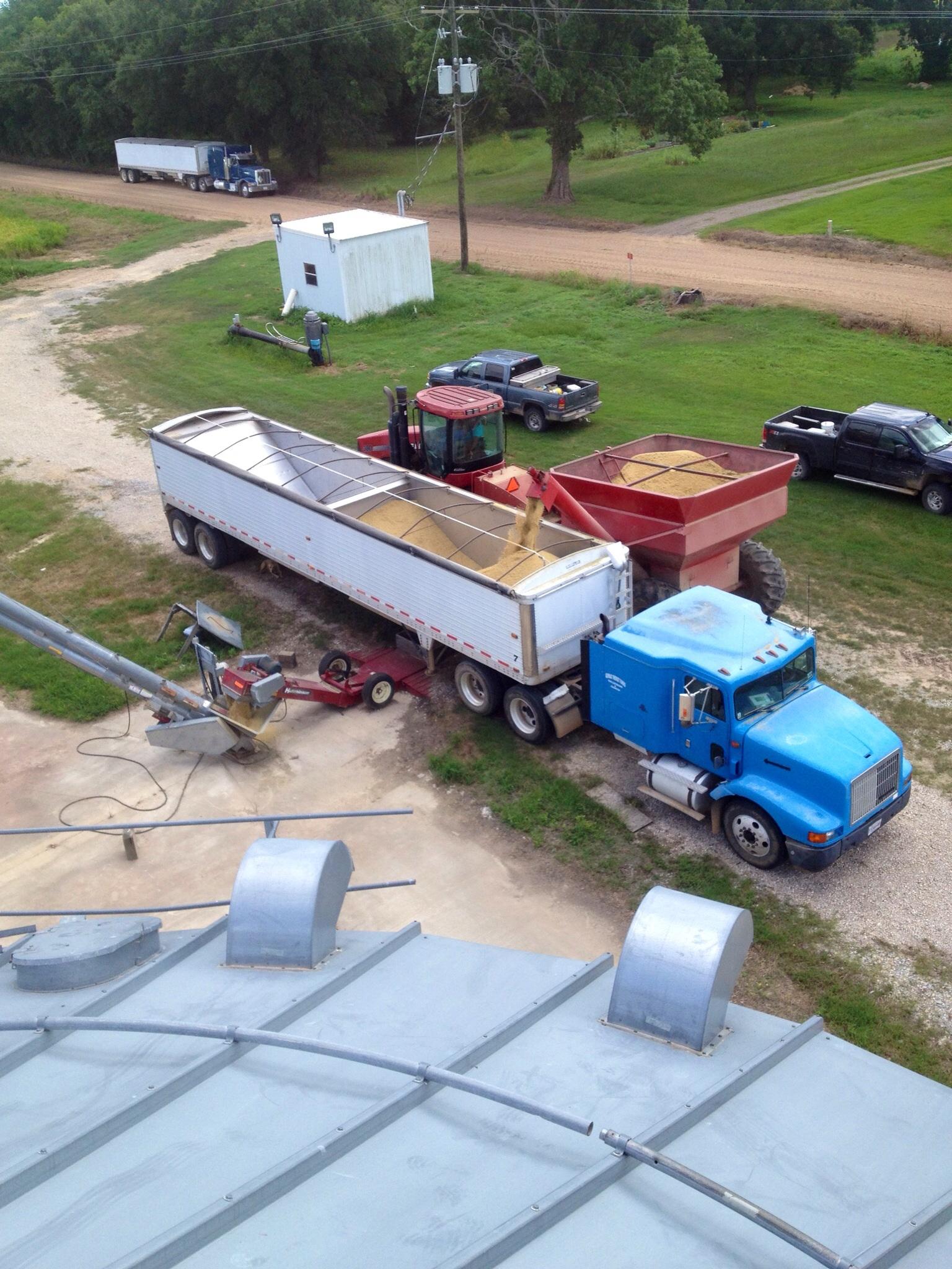 On top of the bins unloading trucks